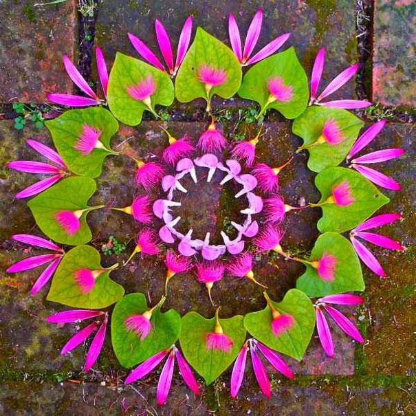 flower-mandalas-kathy-klein-11