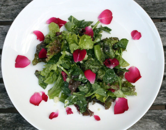 rose salad