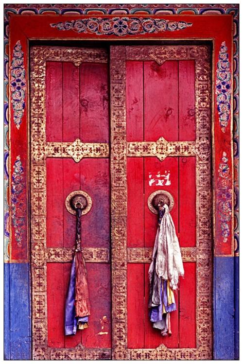 exotic door