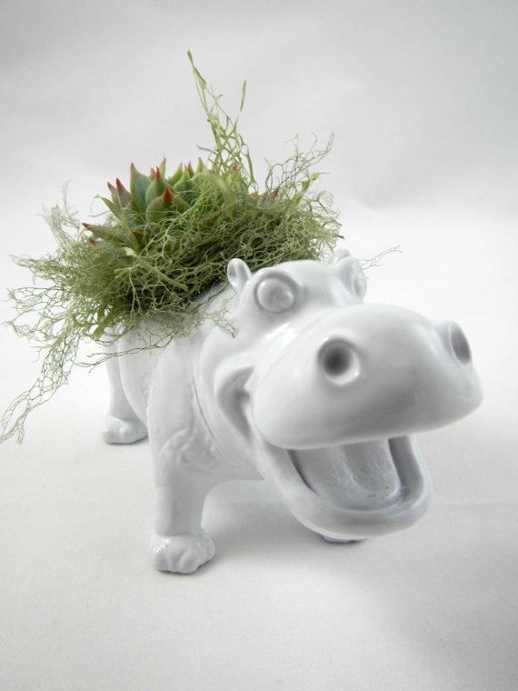 hippo_planter