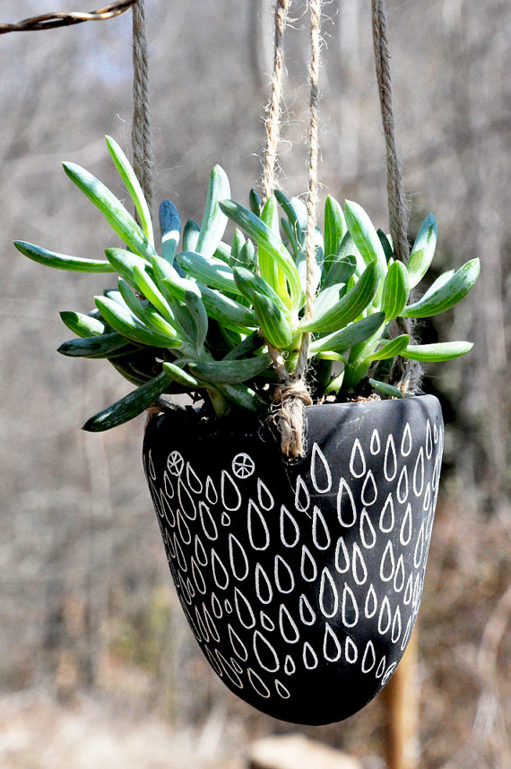 succlent_planter