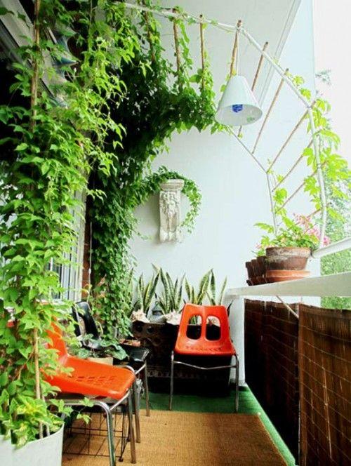 patio gardens