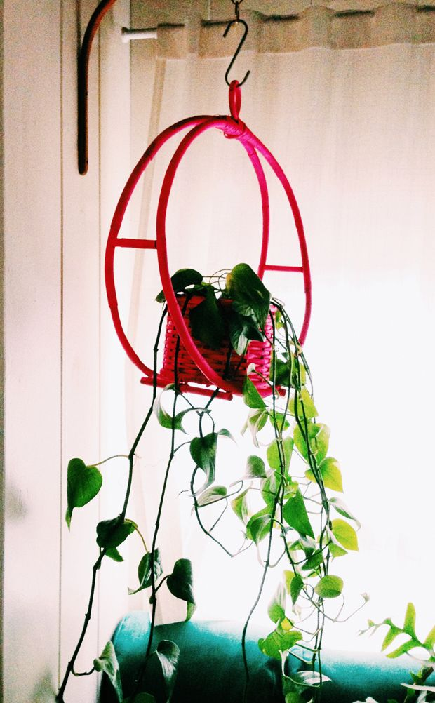 justina blakeney plant hanger