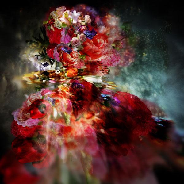 isabelle menin flowers
