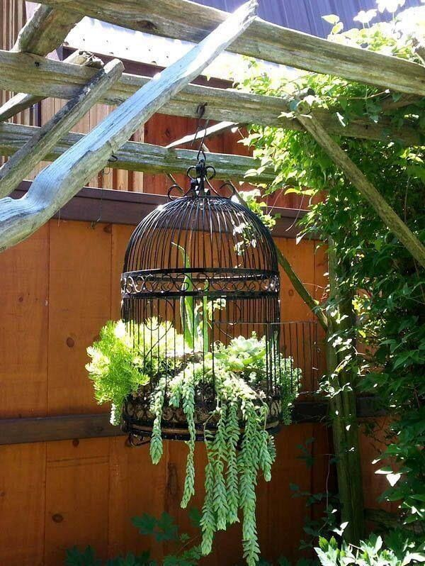 plant holder birdcage