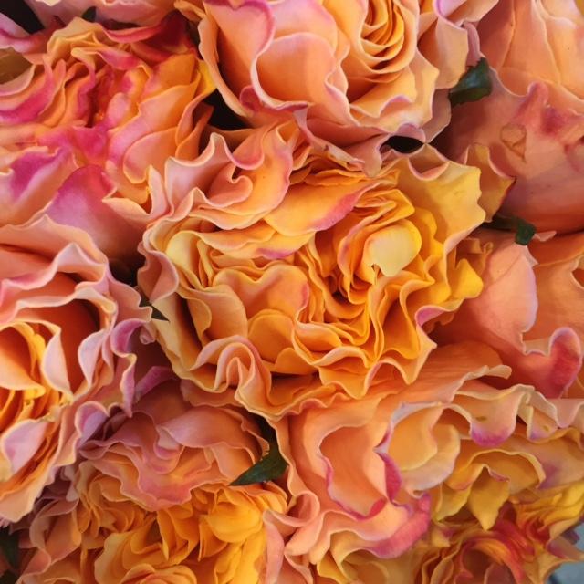 ruffle flowers