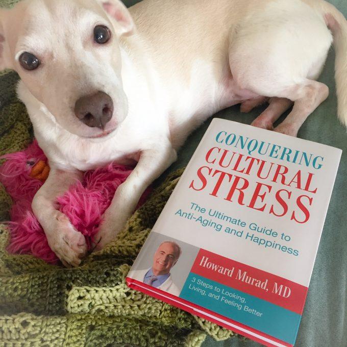 eliminate cultural stress